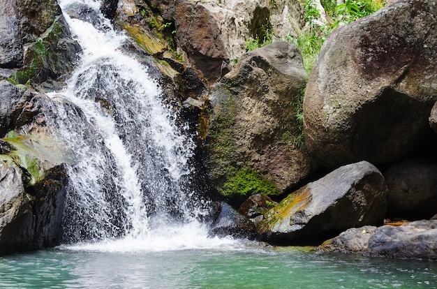 Bosque profundo pequeña cascada tropical Foto Premium