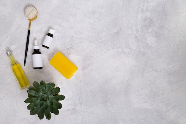Botellas de aceites esenciales; algodón; jabón amarillo y planta de cactus sobre fondo de hormigón para escribir el texto Foto gratis