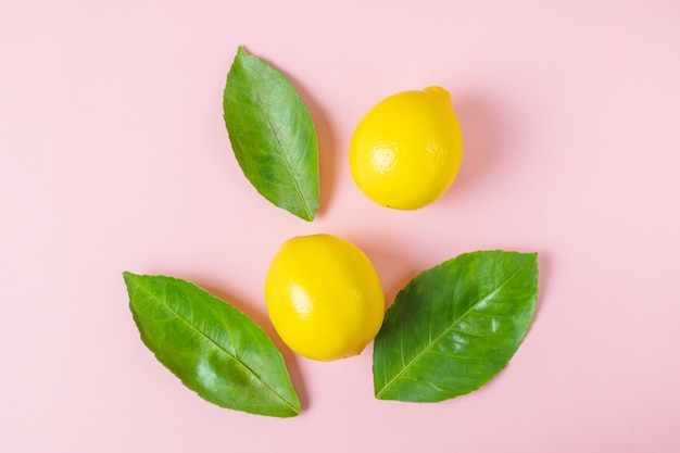 Brillantes maduros jugosos limones y hojas de un limonero sobre un fondo rosa pastel. Foto Premium