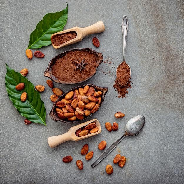 Cacao en polvo y granos de cacao sobre hormigón. Foto Premium