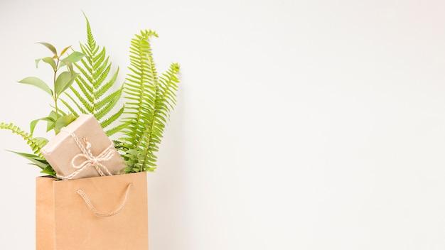 Una caja de regalo y hojas de helecho verde en una bolsa de papel marrón con espacio para texto Foto gratis