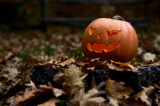 Calabaza naranja enojada con grandes ojos de miedo y sonrisa. decoración hecha a mano preparada para halloween. celebrando las vacaciones de otoño en el bosque o parque cerca de casa entre hojas. Foto gratis