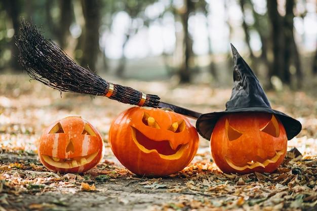 Calabazas de halloween con escoba en un bosque de otoño Foto gratis