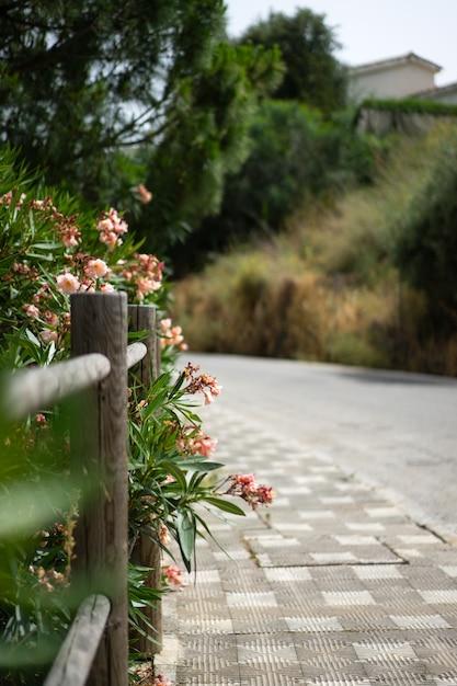 Cálidas calles de un pequeño pueblo del sur de españa. Foto gratis