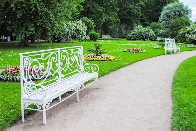 Callejón de tsarskoye selo en san petersburgo Foto Premium