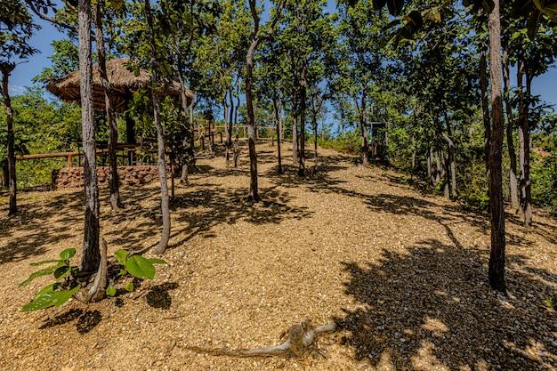 El camino al gran cañón pha chor en la provincia de chiang mai, tailandia Foto Premium