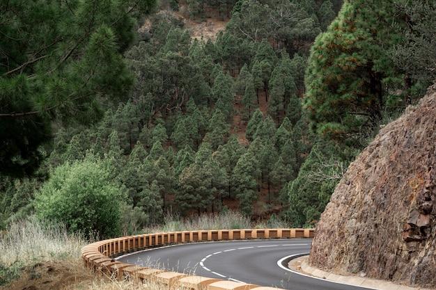 Camino de la curva en la colina Foto gratis