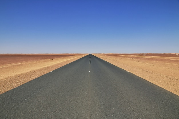 El camino en el desierto del sahara, áfrica Foto Premium