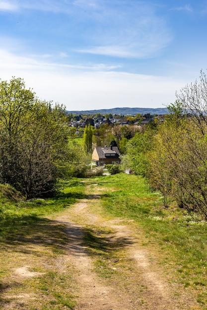 Camino estrecho en una tierra verde rodeada de muchos árboles con casas Foto gratis