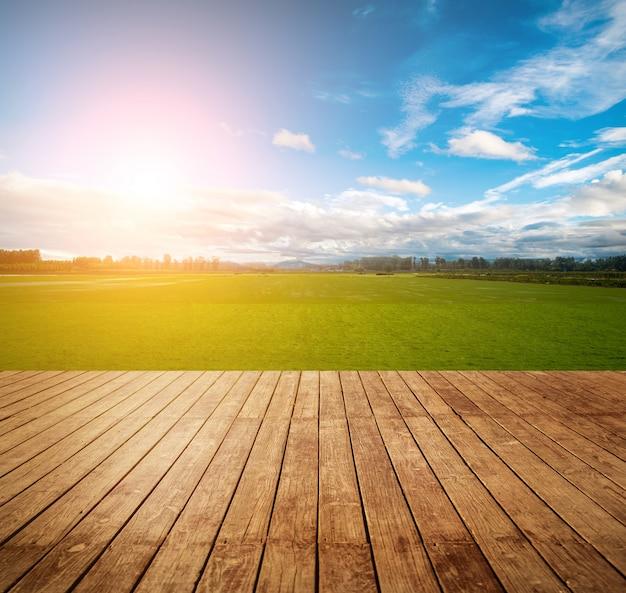Campo colorido hierba al aire libre fresco Foto gratis