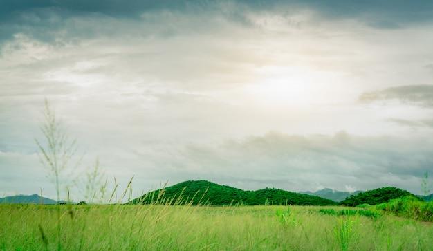 Campo de hierba verde delante de la montaña en el campo. paisaje de la naturaleza. prado de hierba verde en la granja. cielo después de la lluvia con nubes blancas y grises. Foto Premium