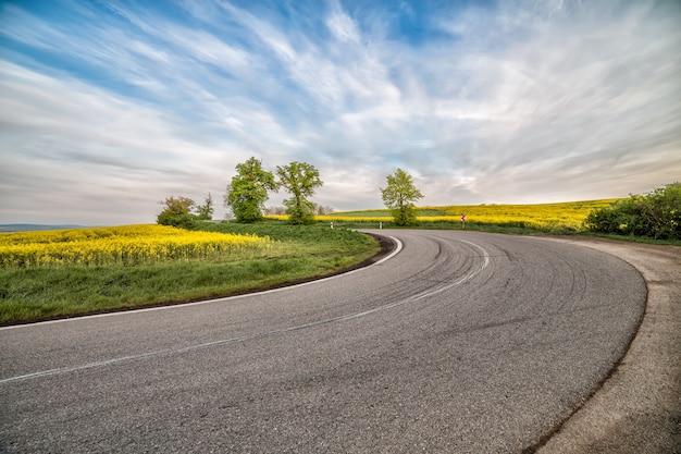 Carretera de asfalto vacía y campo floral de flores amarillas Foto Premium