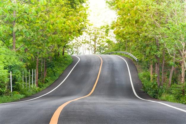 Carretera de campo con árboles a ambos lados, curva de la carretera Foto Premium