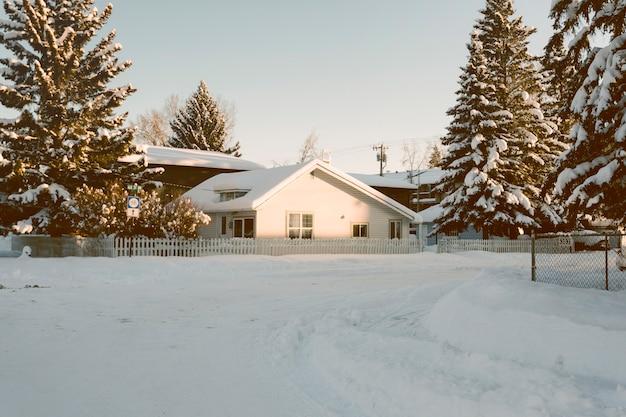 Casa con pinos nevados en invierno Foto gratis