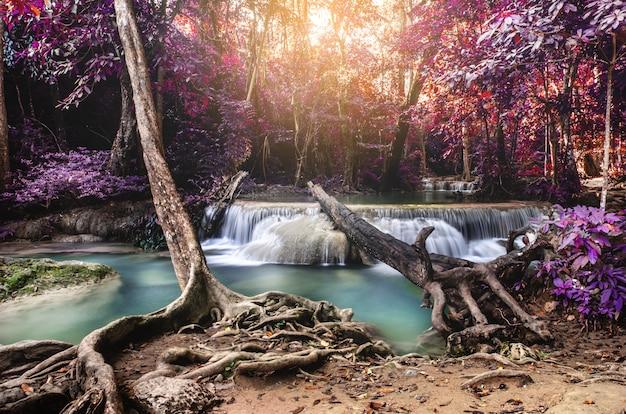 Cascada en el bosque profundo Foto Premium