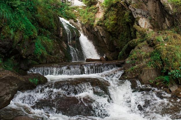 Cascada choodor en el lago teletskoye Foto Premium