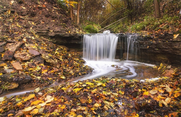 Cascada y corriente del río en el bosque Foto Premium