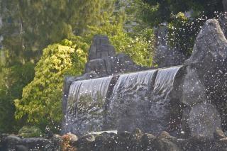Cascada exóticas Foto gratis