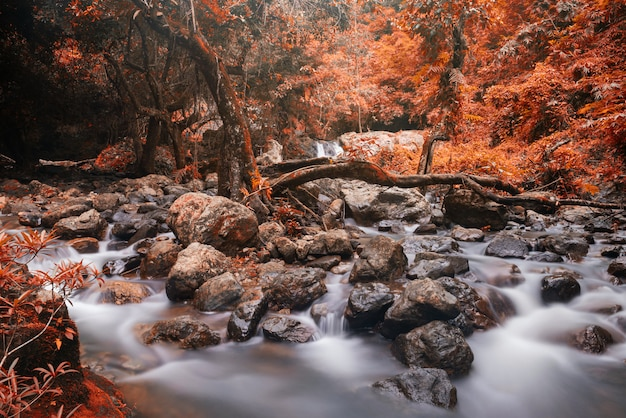 Cascada movimiento cascada en otoño Foto Premium