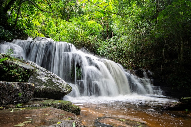 Cascada en la selva tropical, provincia de phitsanulok, tailandia Foto Premium