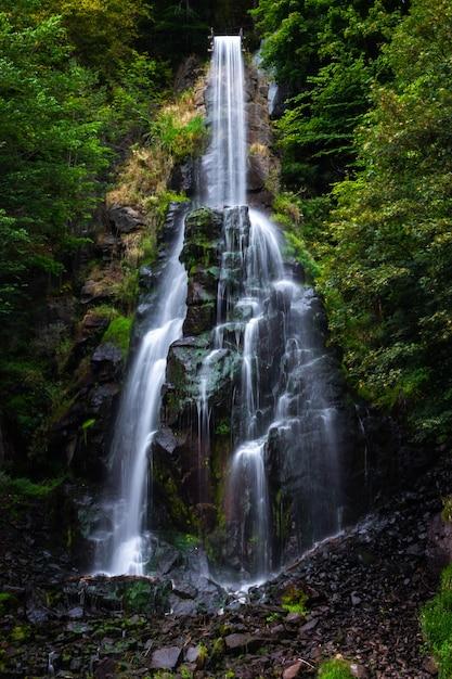 Cascada trusetaler que fluye a través del bosque en alemania Foto gratis