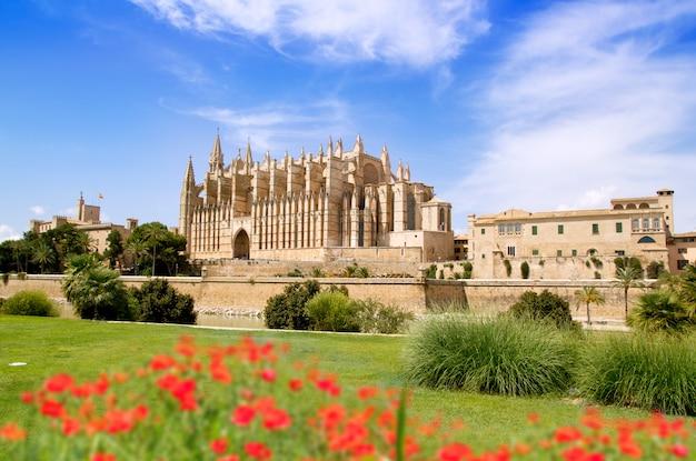 Catedral de mallorca y almudaina del jardín de flores rojas. Foto Premium