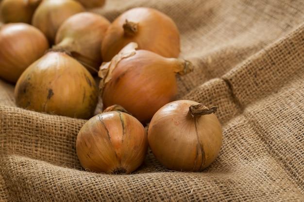 Cebollas en manta Foto gratis