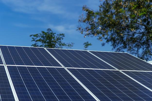 Las células solares convierten la energía solar del sol en energía. concepto de célula solar con espacio de copia. Foto Premium