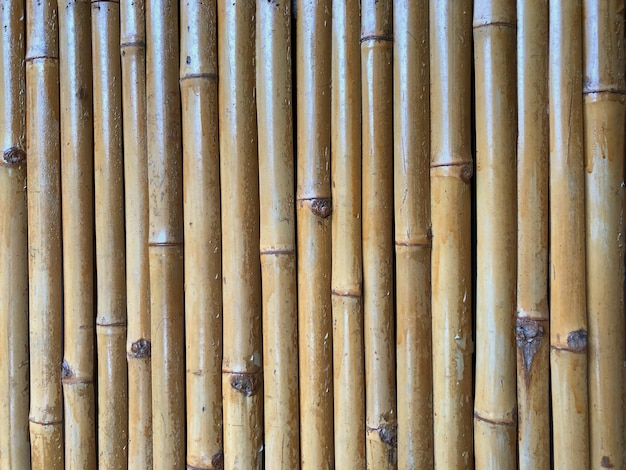 Cerca De Bambu Seco Como El Fondo Descargar Fotos Premium - Bambu-seco