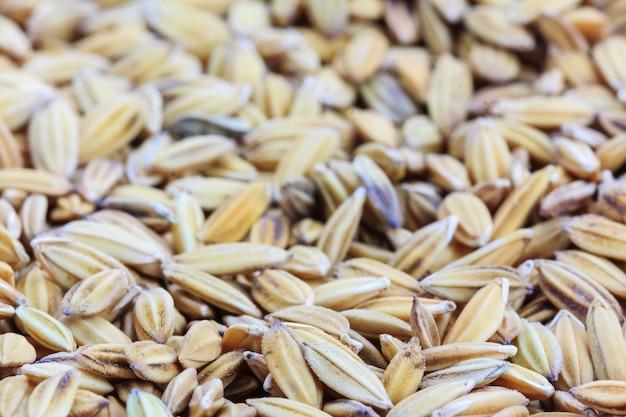 Cerrar arroz de arroz para el fondo Foto Premium