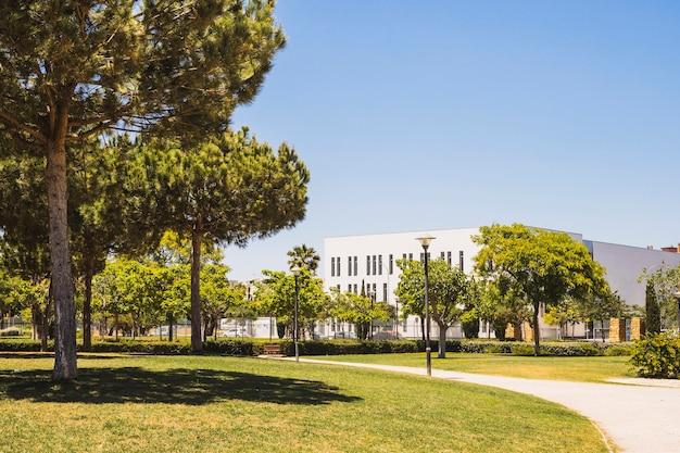 Césped del campus en un día soleado Foto Premium