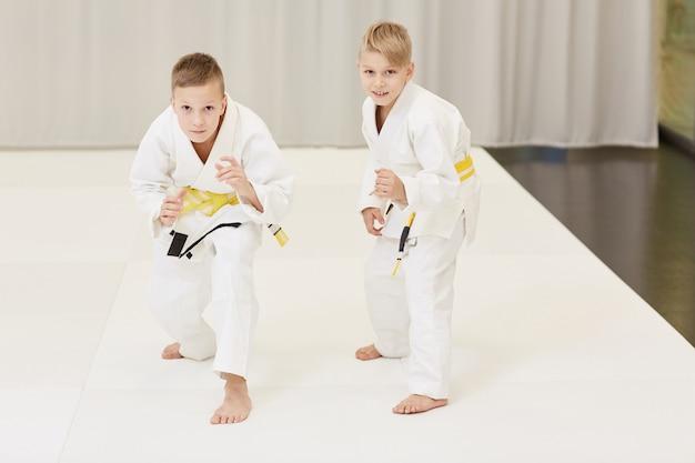 Chicos practicando karate Foto Premium