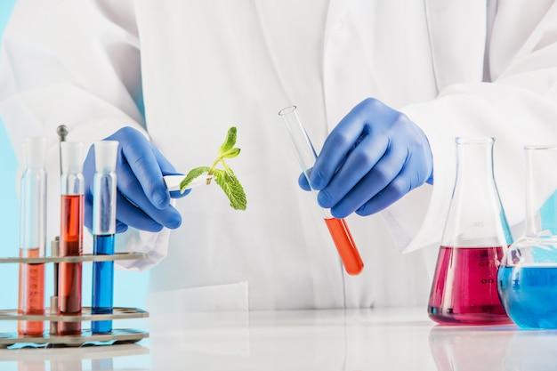 Ciencias de las plantas en laboratorio. Foto gratis