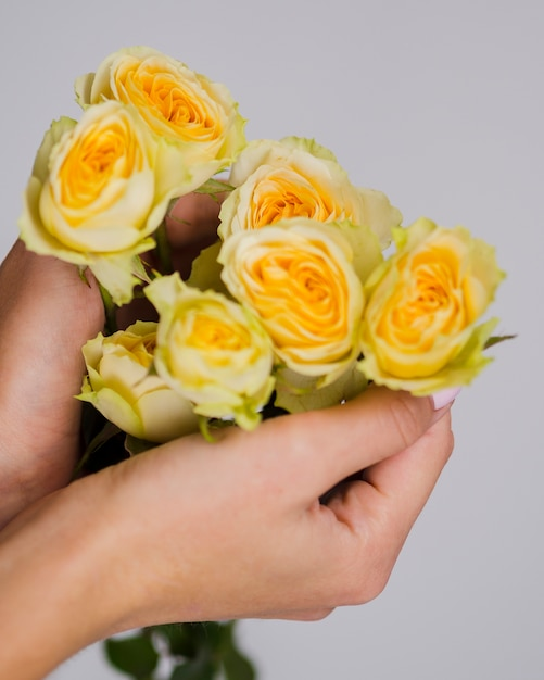 Ciérrese encima de las manos que sostienen rosas amarillas Foto gratis
