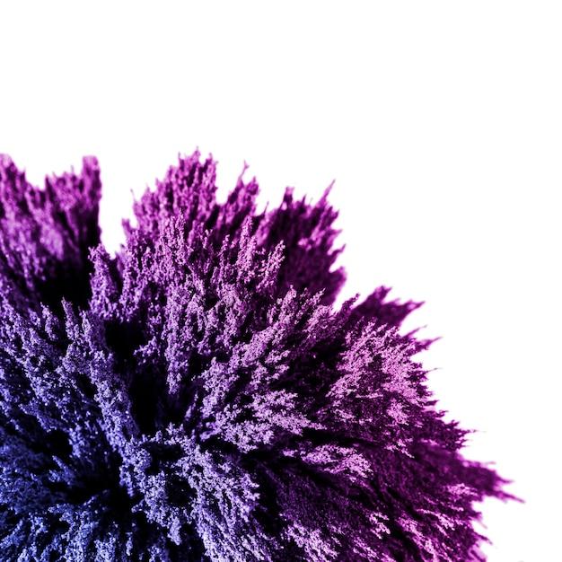Close-up de afeitado metálico púrpura aislado sobre fondo blanco. Foto gratis