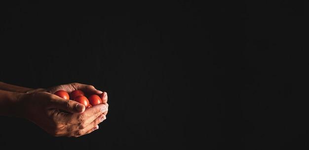 Close-up persona sosteniendo tomates con espacio de copia Foto gratis
