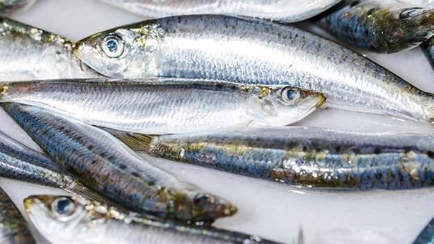 Close-up de pescado blanco fresco Foto gratis