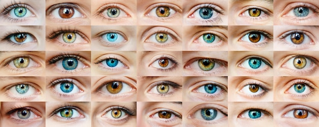 Collage de ojos Foto Premium