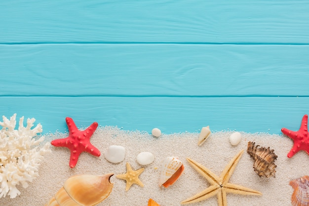 Composición aplanada de arena y conchas marinas. Foto gratis