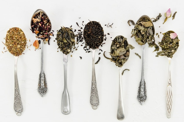 Composición de diferentes hojas de té Foto gratis