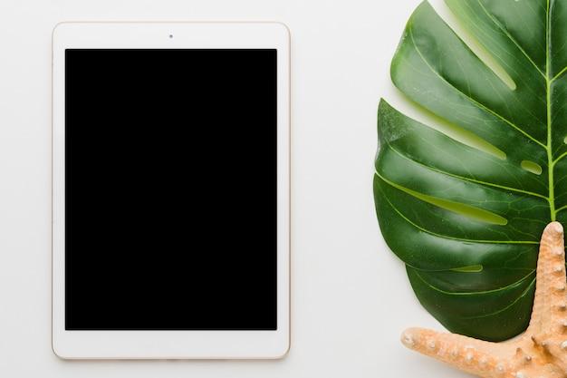 Composición de la hoja de la planta de la tableta y las estrellas de mar Foto gratis