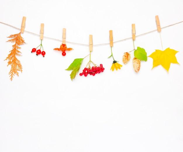 Composición de otoño hecha de flores, hojas de arce, bayas, escaramujos, viburnum rojo, conos de lúpulo y physalis. Foto Premium