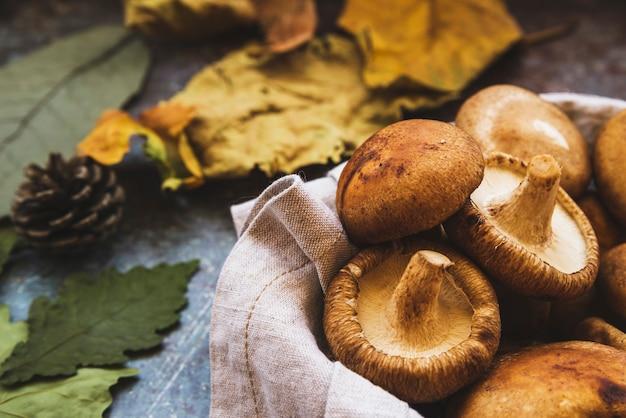 Composición de otoño con setas pequeñas en servilleta Foto Premium