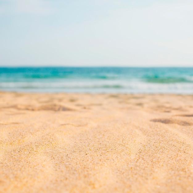 Composición de playa con espacio en blanco para texto Foto gratis