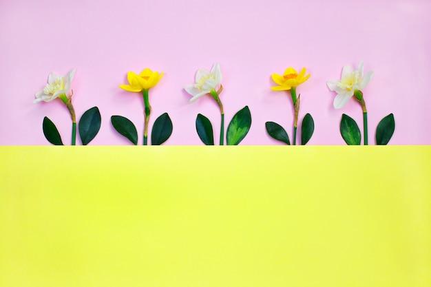 Composición primaveral hecha con flores y hojas de narciso Foto Premium