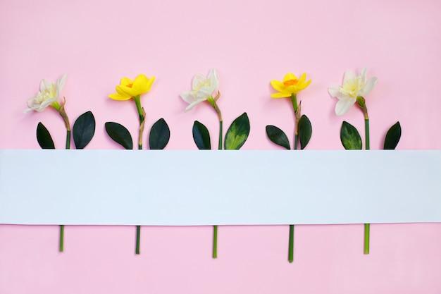Composición primaveral realizada con flores de narciso Foto Premium