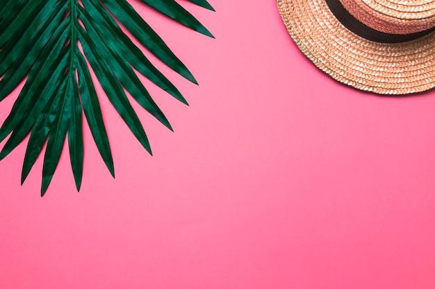 Composición de sombrero beige y hoja de planta. Foto gratis