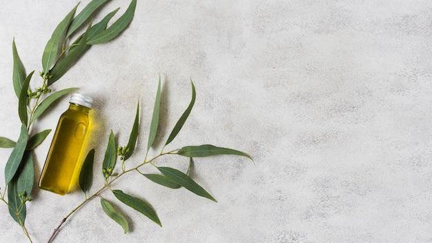 Composición de spa para aceite de oliva de estilo de vida saludable Foto Premium