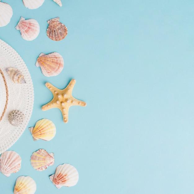 Composición de verano con conchas a la izquierda Foto gratis