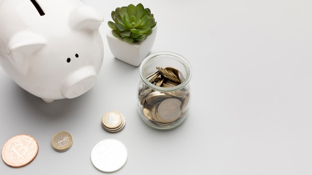 Concepto de economía con hucha y planta suculenta Foto Premium